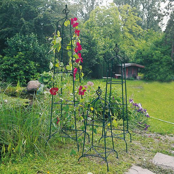 rosenobelisk windsor estate kletterrosen kaufen. Black Bedroom Furniture Sets. Home Design Ideas